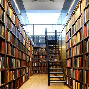 Библиотеки Михайловки